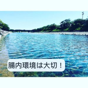 You are currently viewing 腸内環境は大切!