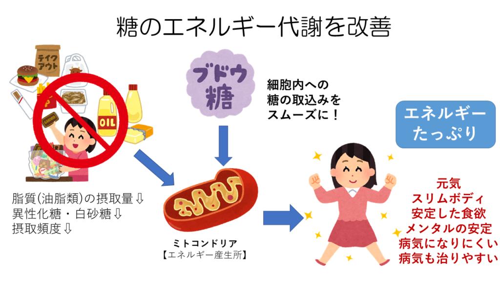 糖のエネルギー代謝改善