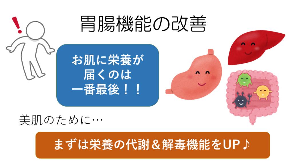 美肌には胃腸機能の改善から