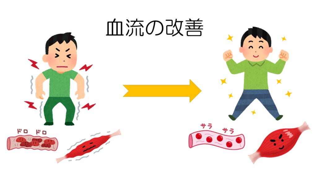 血流の改善