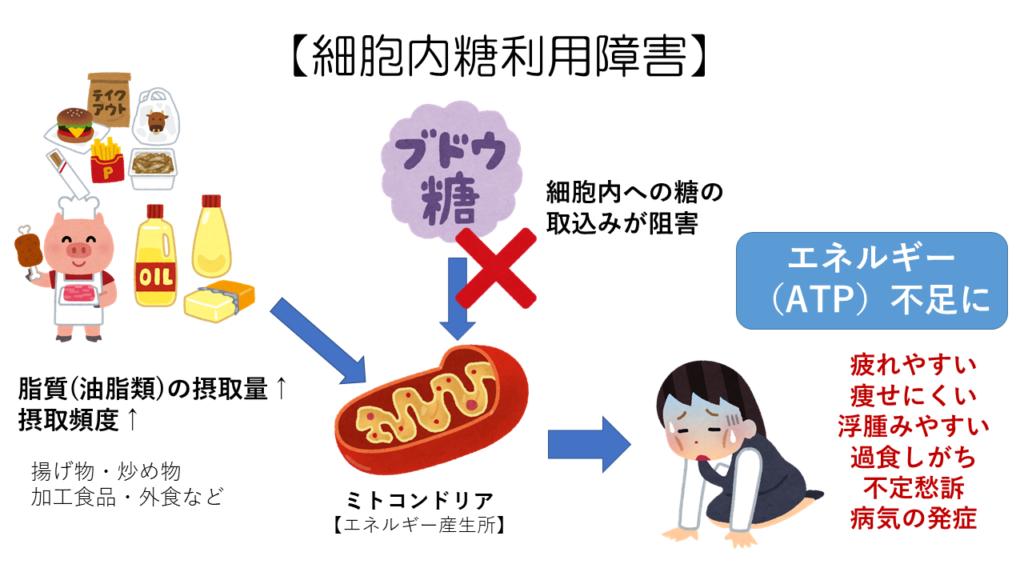 細胞内糖利用障害(ダイエット)