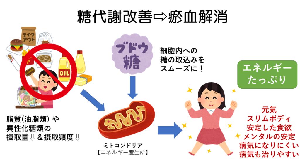 糖代謝改善で瘀血解消
